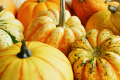 3 Low-fat Pumpkin Recipes for Fall