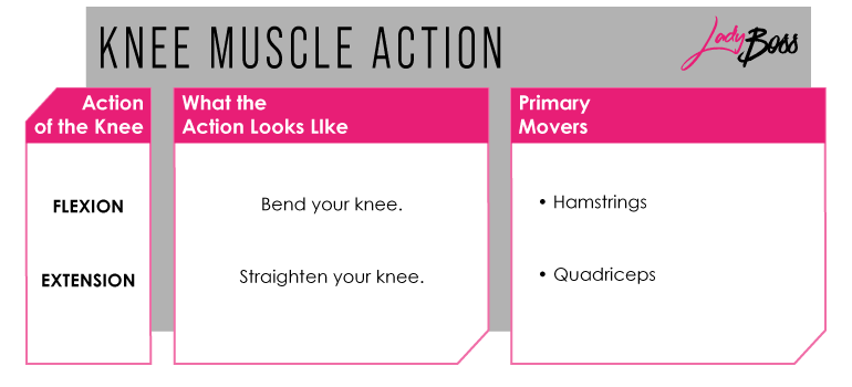Knees in leg workouts