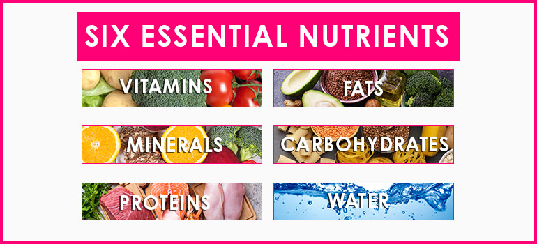 Healthy Foods six Essential Nutrients